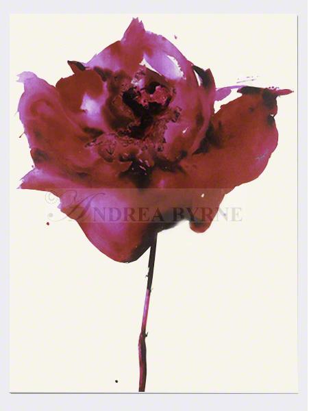 Bridalbodacea (2008) - (60